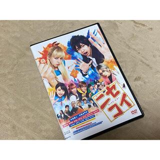 ニセコイ DVD  中島健人 中条あやみ 岸優太(日本映画)