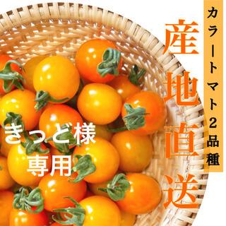 カラートマト1kg (野菜)