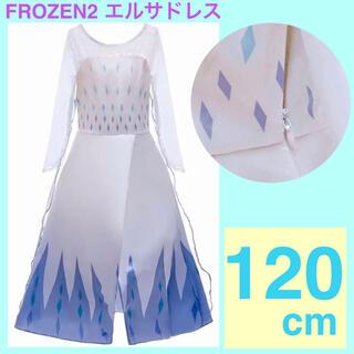 アナ雪 エルサ ドレス コスプレ プリンセス 衣装 仮装 120cm ディズニー(衣装一式)