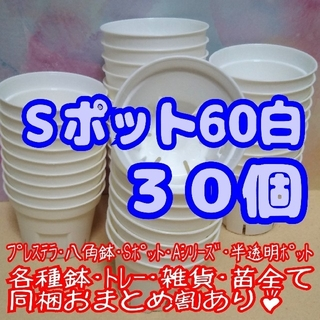 Sポット60 白 30個 2号 丸型 スリット鉢 プレステラ 多肉植物 プラ鉢(プランター)