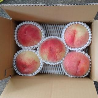 桃 果物 山梨県 ふくさんママ様専用(フルーツ)