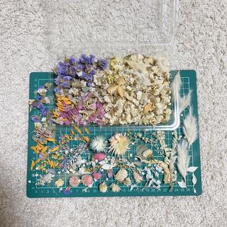 ドライフラワー花材*スターチスヘッドとおまけ達(各種パーツ)