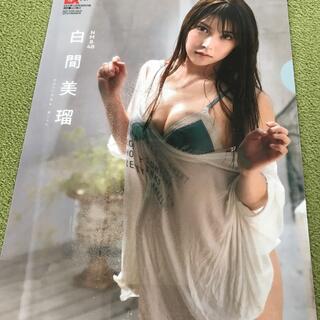 エヌエムビーフォーティーエイト(NMB48)のNMB48 白間美瑠 クリアファイル 美品(アイドルグッズ)