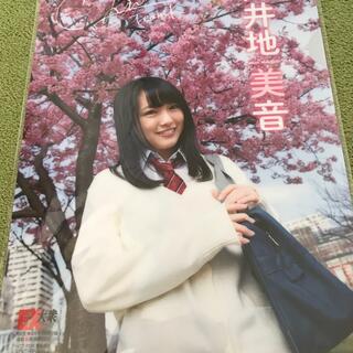 エーケービーフォーティーエイト(AKB48)のAKB48 向井地美音 クリアファイル 新品 未開封(女性タレント)
