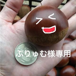ぷりゅむ様専用(フルーツ)