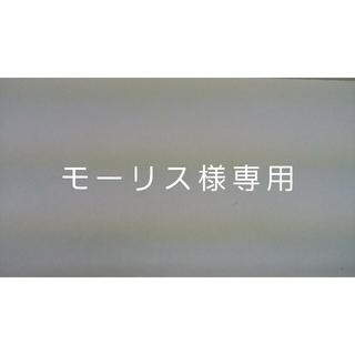 モーリス様専用 2(その他)