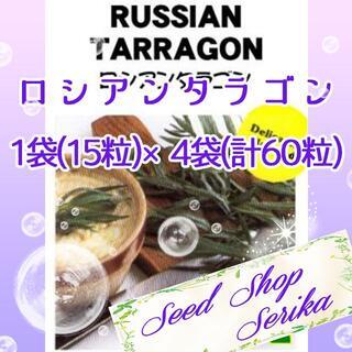 ロシアンタラゴン 家庭菜園 野菜 ハーブ 種(その他)