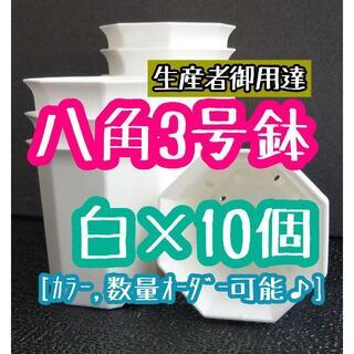 八角鉢 ◎10個◎ ホワイト 3号 3寸 プラ鉢 ミニ鉢 シャトル鉢(プランター)
