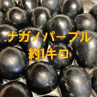 信州産 ナガノパープル 約1キロ(フルーツ)