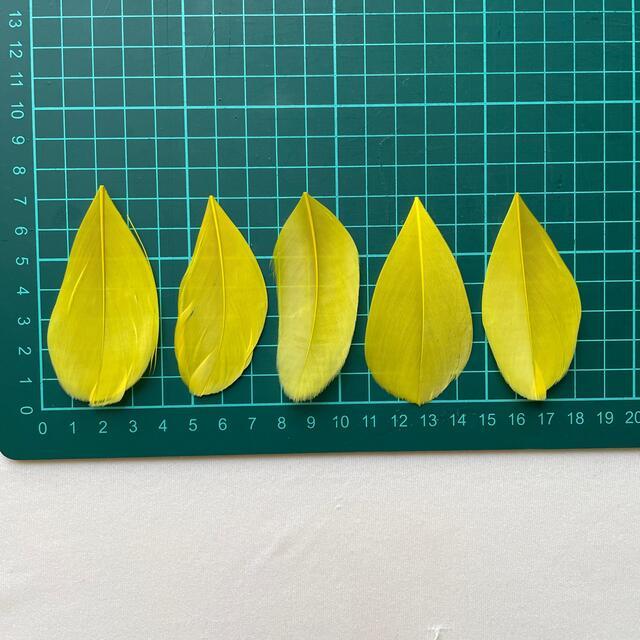 貴和製作所(キワセイサクジョ)の天然羽根パーツ 2種 ハンドメイドの素材/材料(各種パーツ)の商品写真