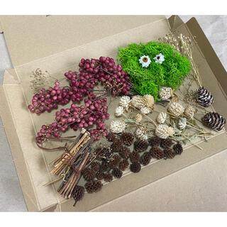 リース 素材 花材 ドライフラワー 詰め合わせ セット 秋冬(ドライフラワー)