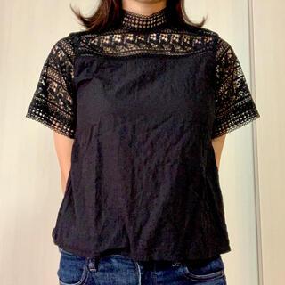 ヴィス(ViS)のシースルー レース半袖トップス 黒(Tシャツ(半袖/袖なし))