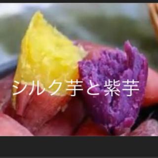 紫芋とベニはるか芋のセット(野菜)