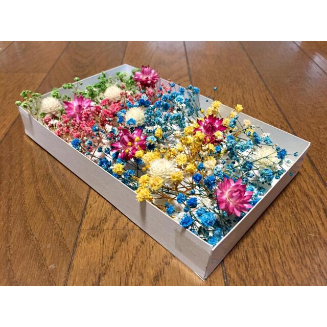 100円お値引き‼️銀の紫陽花が作ったかすみ草と貝細工と千日紅と。 ハンドメイドのフラワー/ガーデン(ドライフラワー)の商品写真