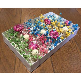 100円お値引き‼️銀の紫陽花が作ったかすみ草と貝細工と千日紅と。(ドライフラワー)