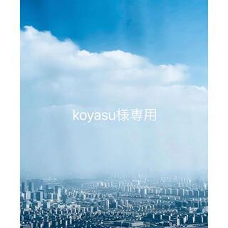 koyasu様専用(その他)