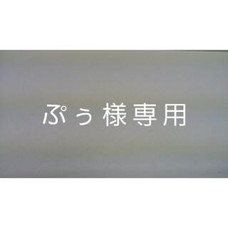 ぷぅ様専用(その他)