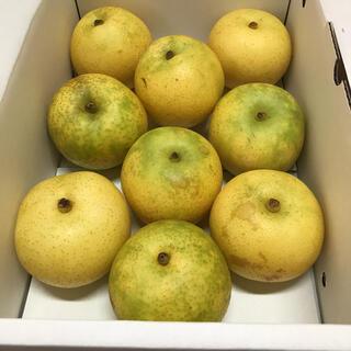 二十世紀梨 ご家庭用 2キロ(フルーツ)