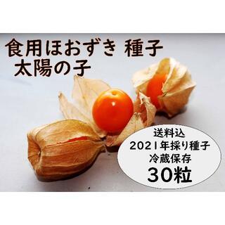 【美容効果で注目】 食用ほおずき「太陽の子」種30粒 ワンコイン500円(フルーツ)