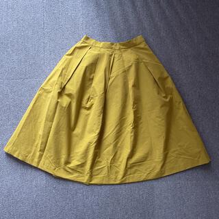 エージーバイアクアガール(AG by aquagirl)の汚れ無し AG by aquagirl  スカート 膝丈(ひざ丈スカート)