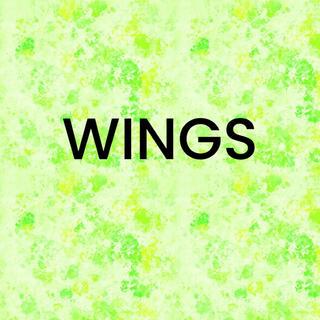 防弾少年団(BTS) - WINGSTOUR DVD