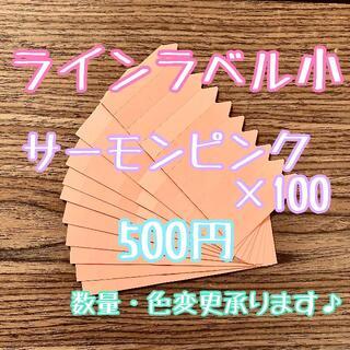 ◎ 100枚 ◎ 肌 ( 小 ) ラインラベル 園芸ラベル カラーラベル(プランター)
