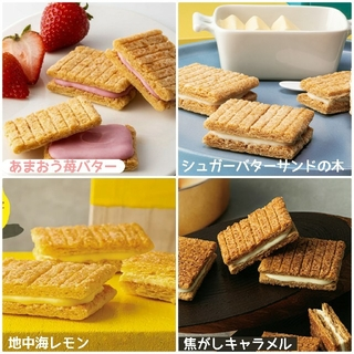 【シュガーバターの木 】お試し8個セット(菓子/デザート)