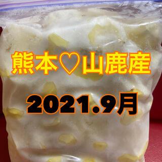 熊本県産 山鹿 和栗 むき栗(野菜)