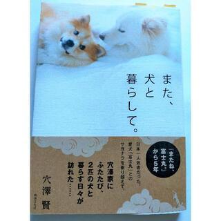 「また、犬と暮らして。」穴澤賢