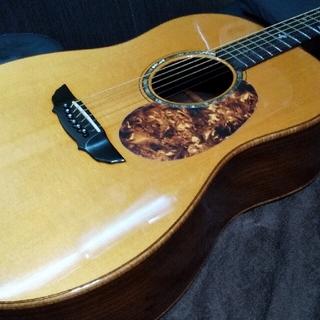 ギブソン(Gibson)の最終❗️ジェームスグッダール(アコースティックギター)