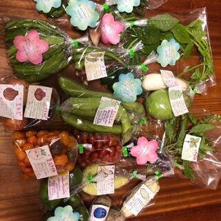 野菜ハーブ果物セット(野菜)