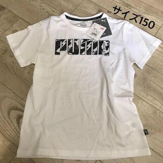 プーマ(PUMA)のサイズ150 Tシャツ(Tシャツ/カットソー)