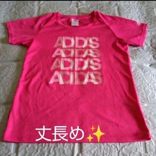 adidas - アディダス Tシャツ レディース