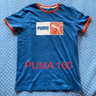 プーマ(PUMA)のPUMA Tシャツ 160 ☆ 新品(Tシャツ/カットソー)