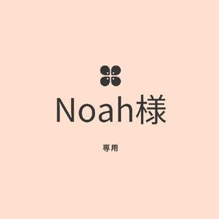 Noah様様専用☆多肉植物(その他)