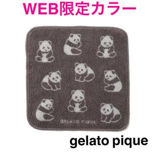 gelato pique - 新品【 ジェラートピケ 】パンダ ハンドタオル WEB限定色 今治