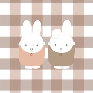Johnny's - 最終値下げ SnowMan 素顔4 正規品
