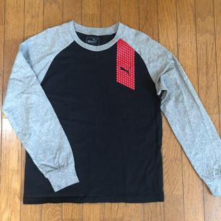 プーマ(PUMA)のPUMA ロングTシャツ・150(Tシャツ/カットソー)