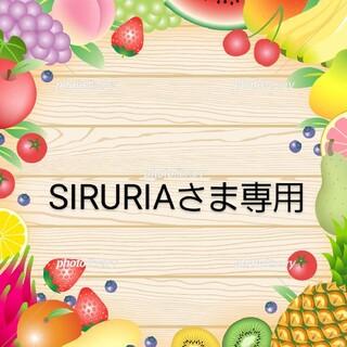 SIRURIAさま専用/ドライフルーツパイナップル(フルーツ)
