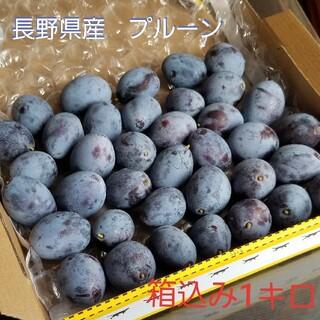 長野県産プルーン 箱込み1kg ※9月18日発送(フルーツ)