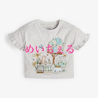 ネクスト(NEXT)の【新品】グレー インタラクティブガーデンキャラクターTシャツ(ガールズ)(Tシャツ)