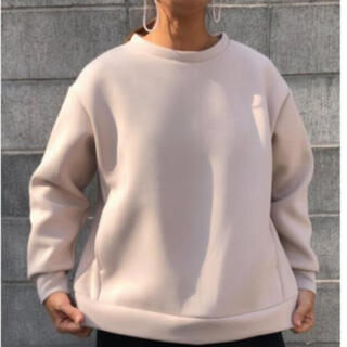 ディーホリック(dholic)の新品select shop tres  スポンジポンチ後裾ファスナープルオーバー(カットソー(長袖/七分))