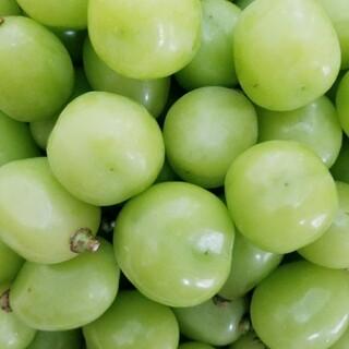 山梨県産 大粒(特秀)シャインマスカット 粒1.1kg(フルーツ)
