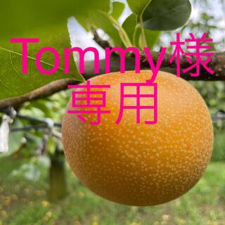 ⚠️Tommy様専用⚠️茨城県産 梨 あきづき 10キロ 秀品 リピ割(フルーツ)