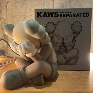 【新品未使用】KAWS SEPARATED brown