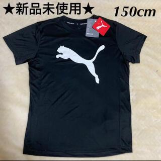 プーマ(PUMA)のPUMA プーマ キッズ ビッグロゴTシャツ 150cm(Tシャツ/カットソー)