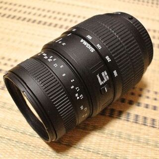 シグマ(SIGMA)の【動作品】シグマ 70-300mm F4-5.6 DL MACRO SUPER(レンズ(ズーム))