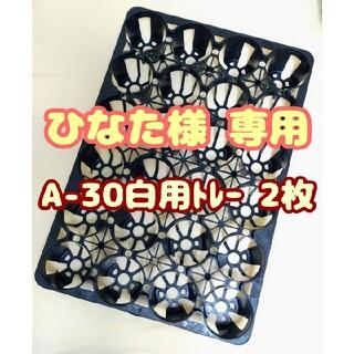 プラ鉢2.5号A-25・3号A-30トレー1枚 スリット鉢 プレステラ 多肉植物(プランター)