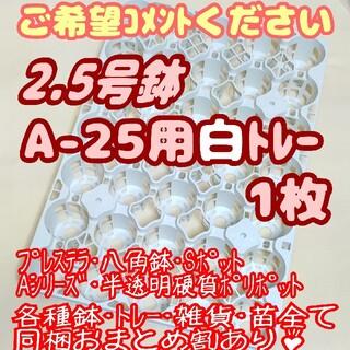 プラ鉢2.5号A-25専用システムトレー白1枚 スリット鉢 プレステラ 多肉植物(プランター)