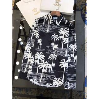 celine - CELINEカ長袖プリントのシャツ